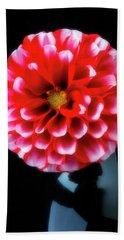 Red White Dahlia In Black Vase Hand Towel