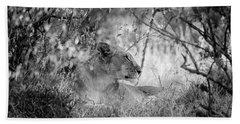 Regal Lioness Hand Towel