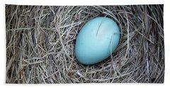 Robin's Egg Hand Towel
