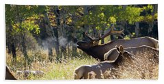 Bath Towel featuring the photograph Rocky Mountain Bull Elk Bugeling by Nathan Bush