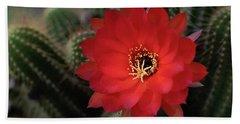 Ruby Red Peanut Cactus  Bath Towel