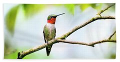 Ruby Throated Hummingbird Bath Towel