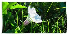 Hand Towel featuring the photograph Sacred Datura - Fairy Flower by Judy Kennedy