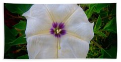 Hand Towel featuring the photograph Sacred Datura - Full Bloom by Judy Kennedy