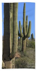 Saguaro Cactus In The Arizona Desert Hand Towel