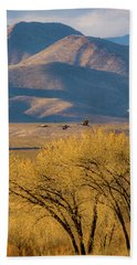 Sandhill Cranes Near The Bosque Hand Towel