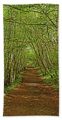 Scotland. Killiecrankie. Path Through The Trees. Hand Towel