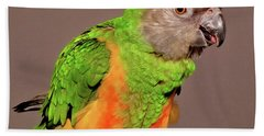 Senegal Parrot Hand Towel