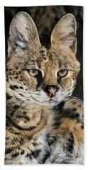 Serval Portrait Wildlife Rescue Hand Towel