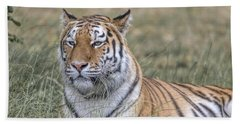Shere Khan Bath Towel