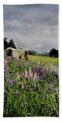 Shetland In A Lupine Field Hand Towel