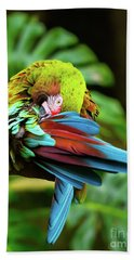 Shy Parrot Hand Towel
