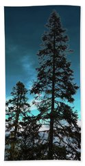 Silhouette Of Tall Conifers In Autumn Hand Towel