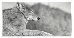 Sleepy Coyote Hand Towel