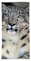 Snow Leopard Portrait Endangered Species Wildlife Rescue Bath Towel