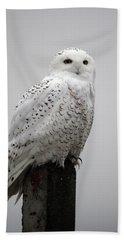Snowy Owl In Fog Bath Towel