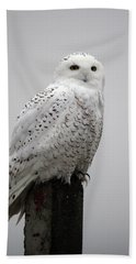 Snowy Owl In Fog Hand Towel
