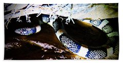 Bath Towel featuring the photograph Sonoran Desert Longnosed Snake by Judy Kennedy