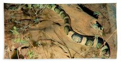 Bath Towel featuring the photograph Sonoran Desert Longnosed Snake Vintage by Judy Kennedy
