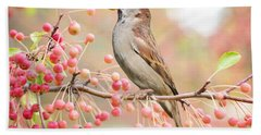 Sparrow Eating Berries Hand Towel