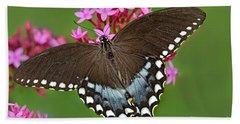 Spicebush Swallowtail Papilio Trollus Hand Towel