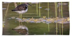 Spotted Sandpiper Reflection Bath Towel