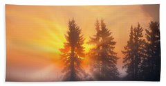 Spruce Trees In The Morning Bath Towel