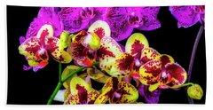 Stunning Purple Yellow Orchids Hand Towel