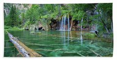 Submerged Log, Hanging Lake Colorado Hand Towel