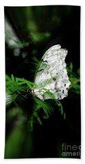 Summer Azure Butterfly Hand Towel