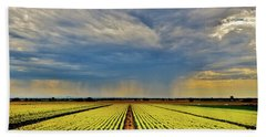 Summer Storm In The Corn Fields Hand Towel