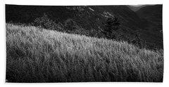 Sunlight On Ferns, Mount Willard Hand Towel