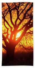 Hand Towel featuring the photograph Sunset And Tree Silhouette 03 by Rob Graham