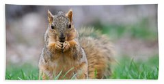Super Cute Fox Squirrel Hand Towel