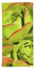 Bath Towel featuring the photograph Sweet Succulents I by Leda Robertson