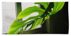 Jungle Plant Hand Towel