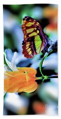 The Charm Of A Butterfly Bath Towel