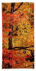 The Colors Of Fall Hand Towel
