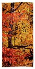 The Colors Of Fall Bath Towel