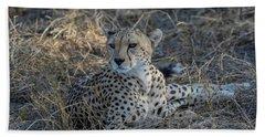 Cheetah In Repose Bath Towel