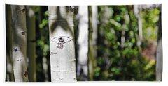 Through The Aspen Forest Hand Towel
