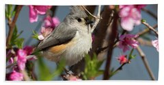 Titmouse And Peach Blossoms Hand Towel