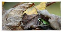 Tree Frog Seeking Shelter Bath Towel