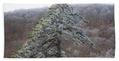Tree With Hoarfrost Bath Towel