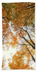 Trees Looking Up Hand Towel