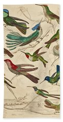 Trochilus - Hummingbirds Bath Towel