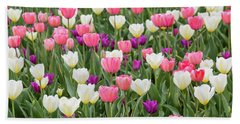 Tulip Field Hand Towel