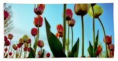 Tulip Holland Michigan 85 Bath Towel