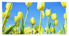 Tulips Holland Michigan 67 Hand Towel