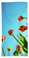 Tulips Holland Michigan 913 Hand Towel